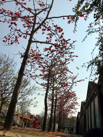 佳里蕭壟文化園區