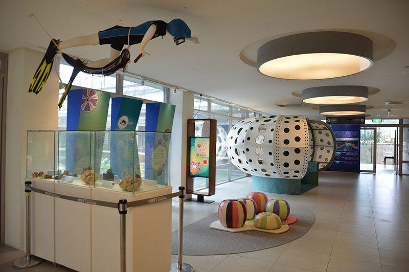 05_海洋科技博物館生動的海膽特展