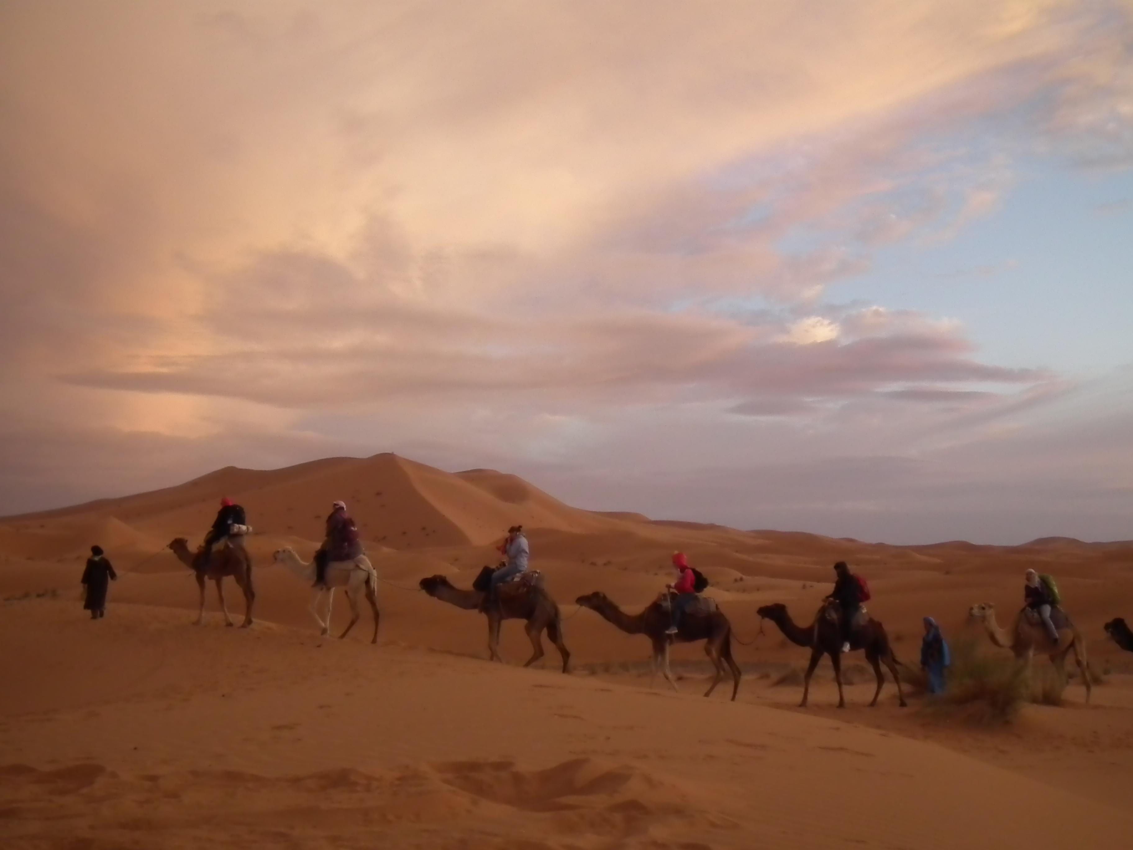 守護撒哈拉沙漠的美麗
