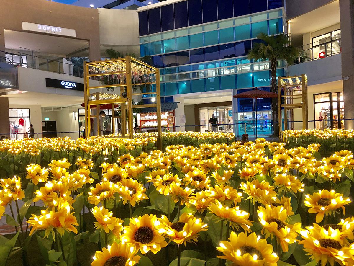 期間限定!千朵發光向日葵就是要殺光你的手機容量!