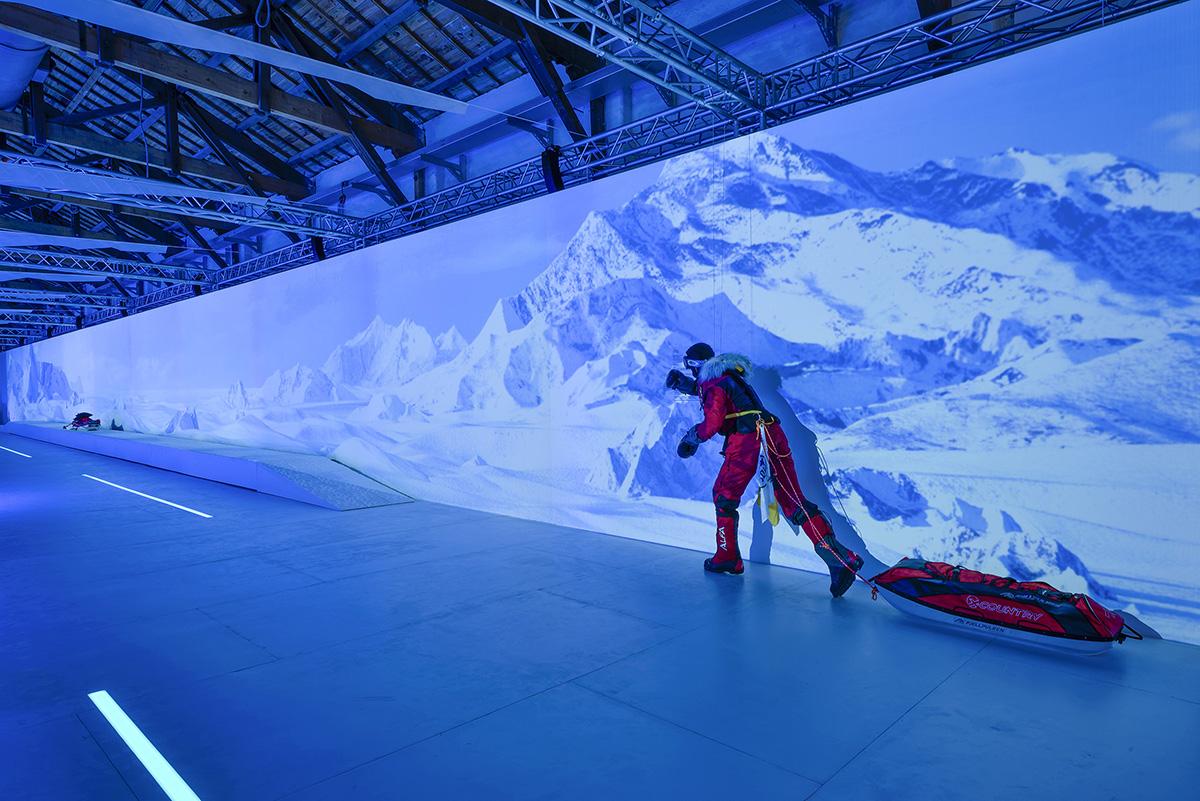 去你的南極!台北松菸體驗極地風情,6大特展亮點大公開