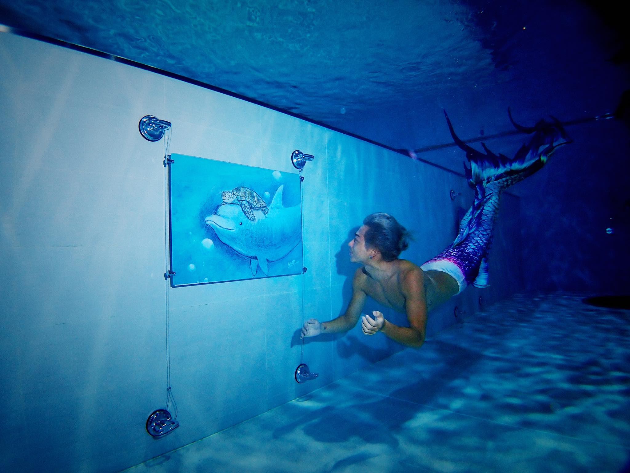 【台中.趣】潛水才能看到下半部,見證海龜一生的繪本展