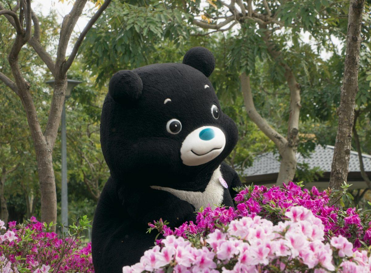 行遍天下,熊讚,Hello Kitty,杜鵑花季