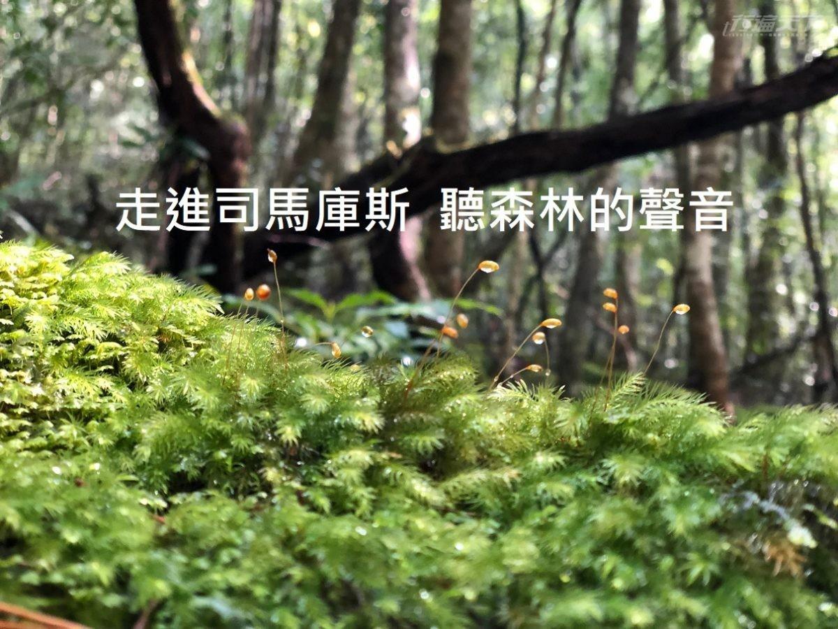 台灣,司馬庫斯,遠得要命部落,上帝的部落,新竹