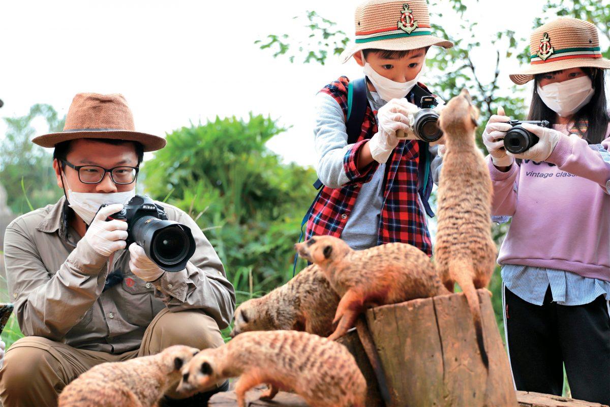 六福村,生態攝影,動物園,冰霧派對,六福萬怡
