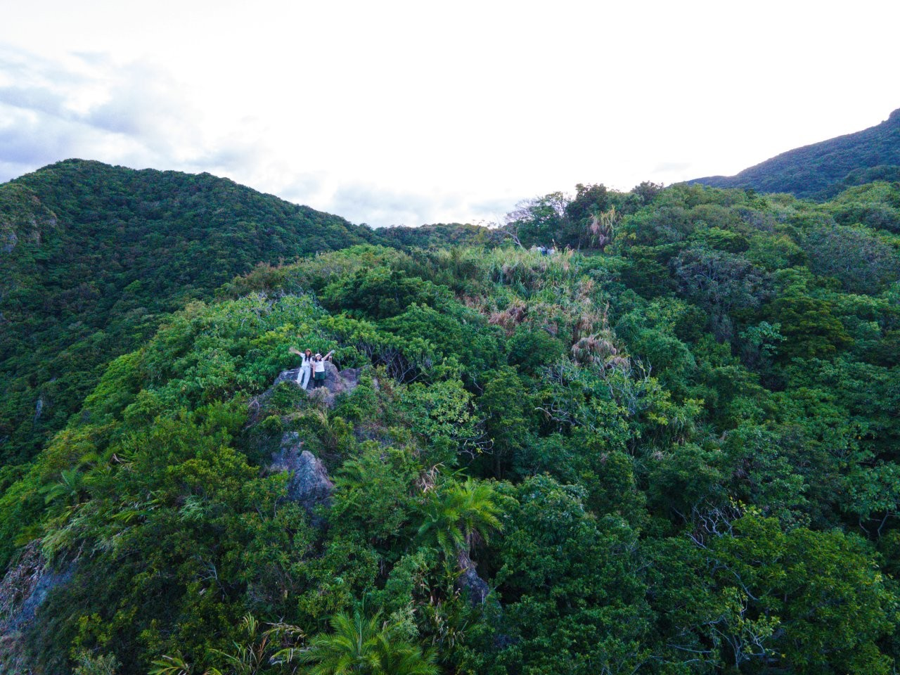 花蓮,閨蜜,太平洋的風,攀樹,找老鷹,地產地銷,最迷你部落