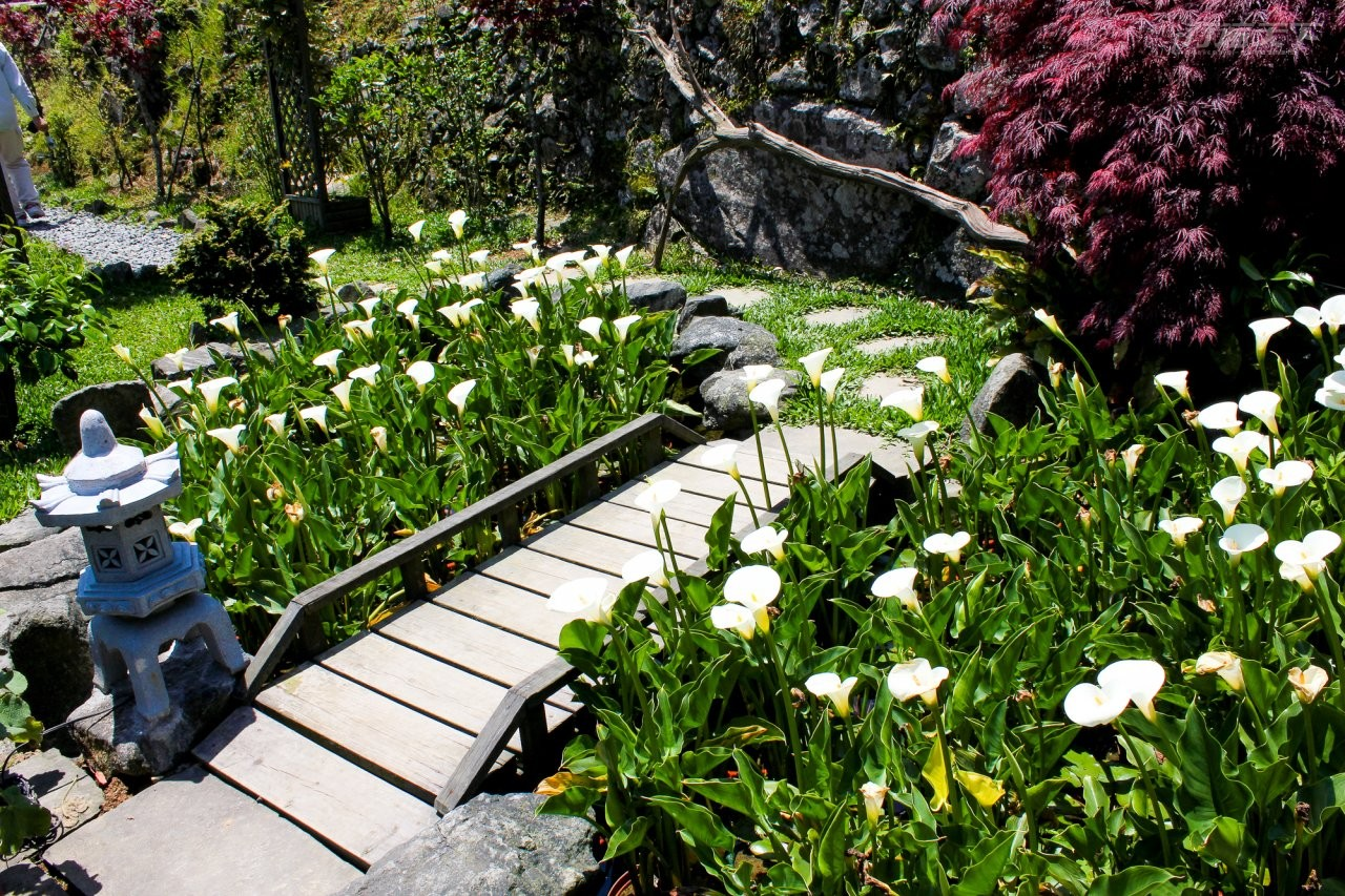 ▲群山環繞的農園,有許多氣氛角落,四季都能賞花。