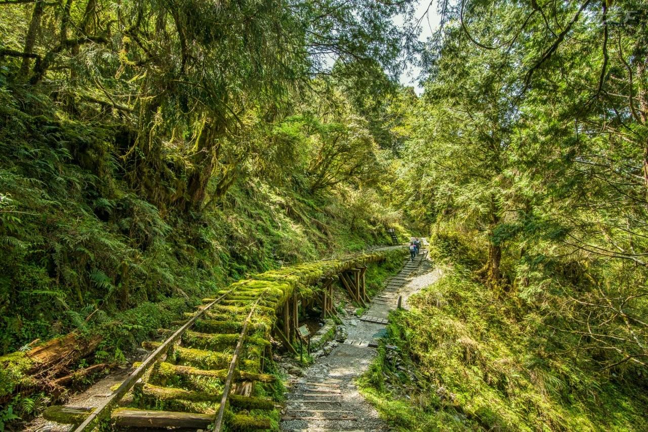 ▲被CNN評選為全球最美28條步道的見晴懷古步道。