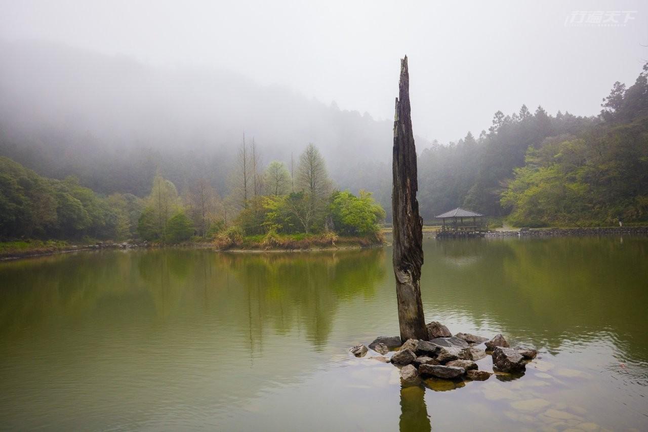 ▲身處高海拔的飄渺明池湖,湖上天鵝與魚悠遊。
