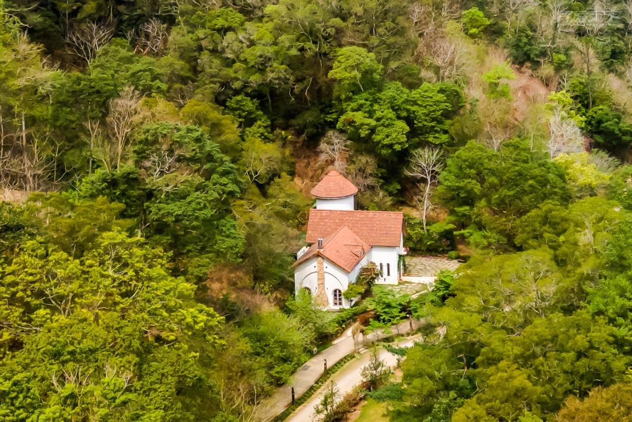 ▲山那邊.綠葉方舟像是航行在樹海裡的幸福森林家園。