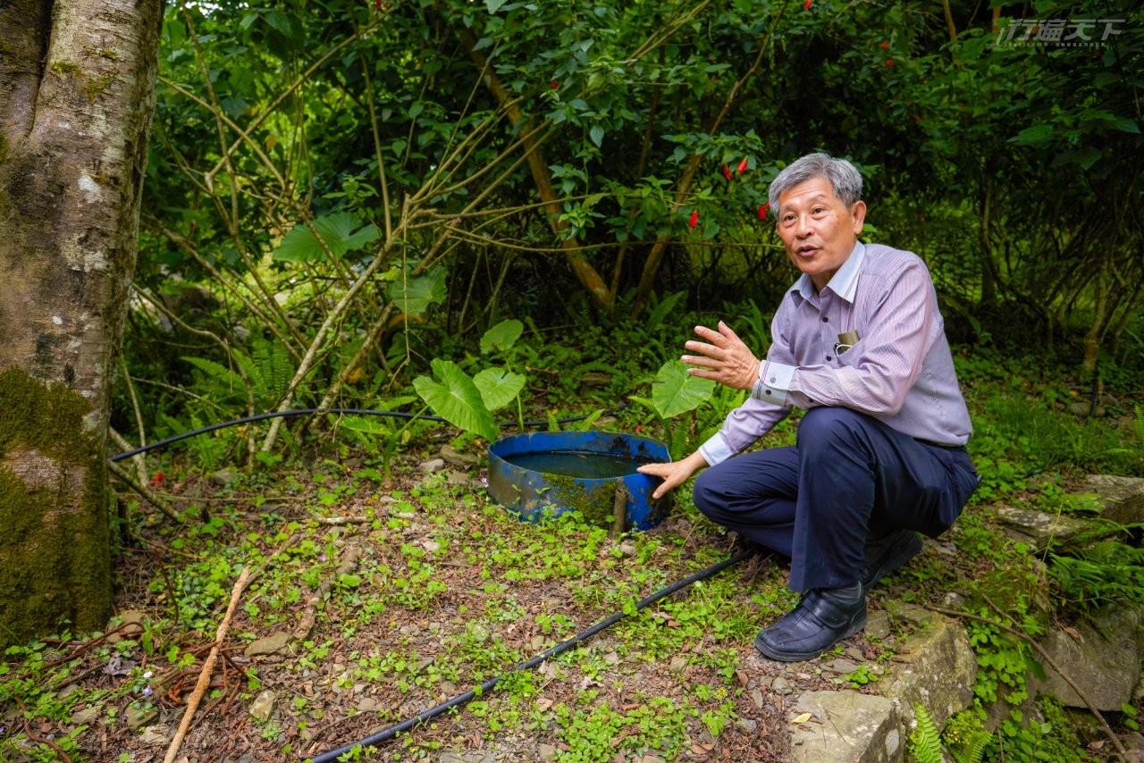 ▲農場場長徐文良巡視園區時,展示他家沒有蚊子的秘密武器「生態防蚊桶」,養大肚魚吃孑孓一級棒。