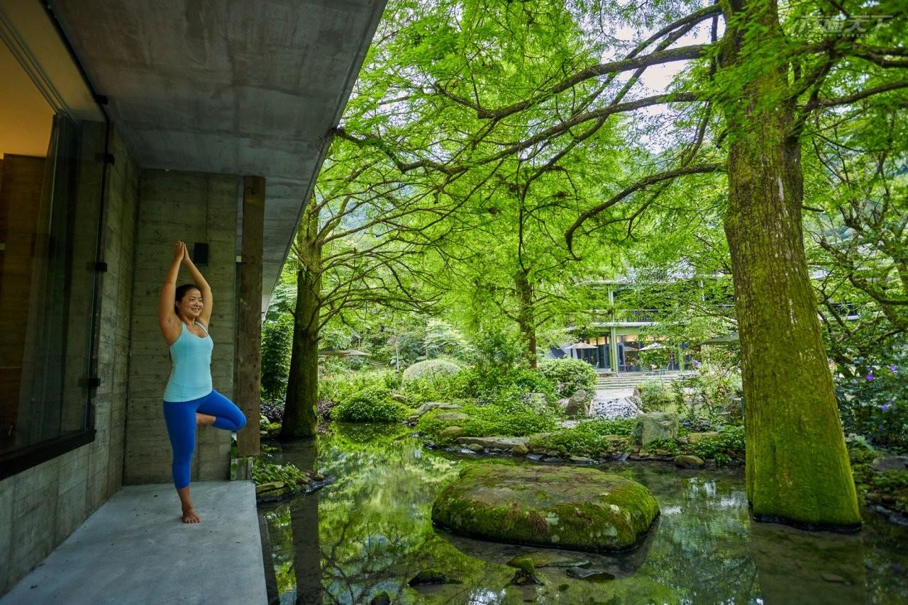 ▲紫屋一樓房型面對落羽松林有戶外露台可在此伸展肢體感受自然生命力。