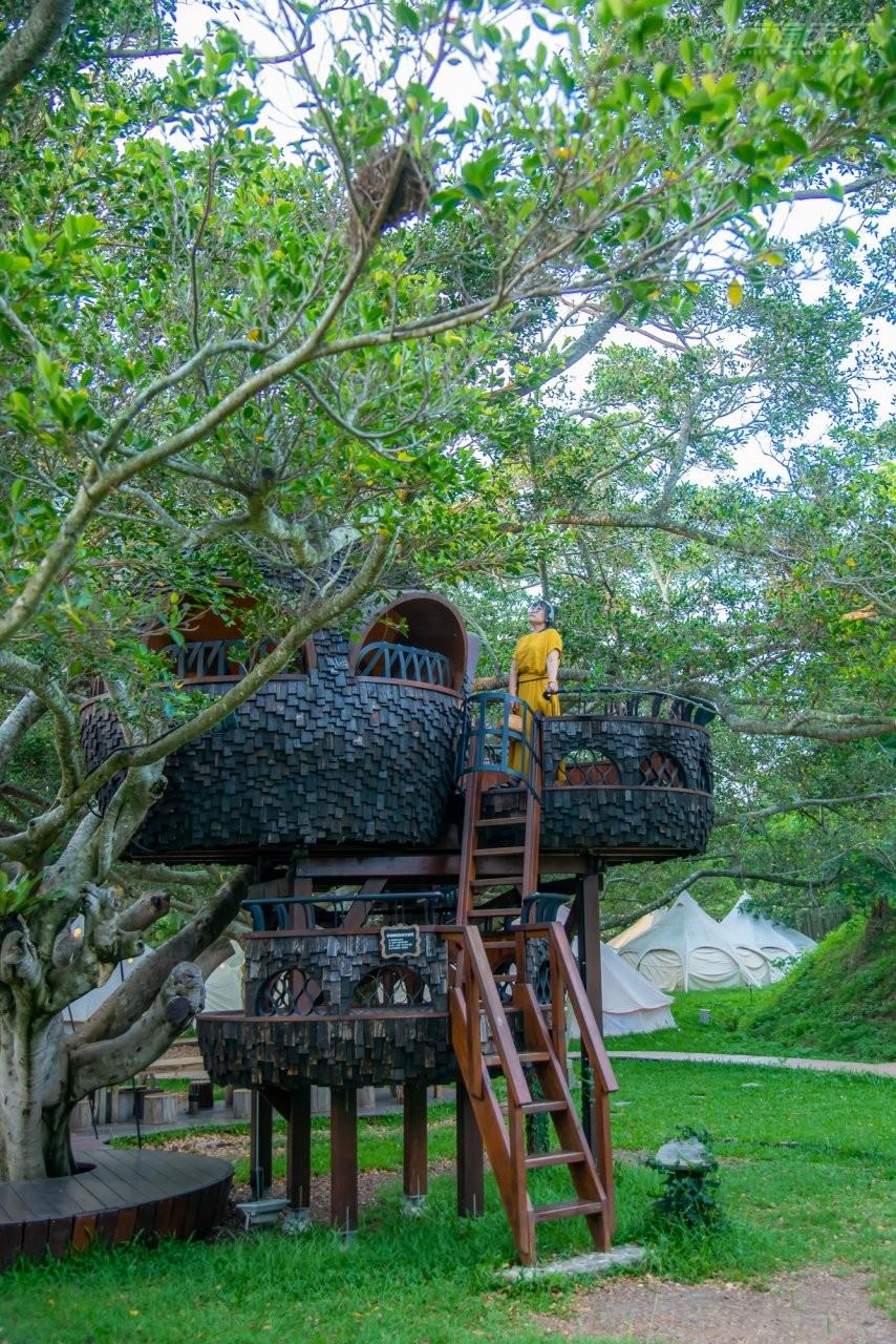 ▲好夢里園區內的3座樹屋都很值得爬上去冒險。