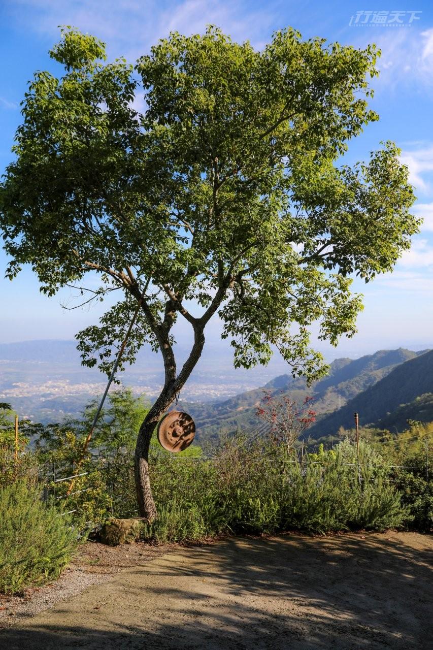 ▲營區開幕前花了4年整地造林,盡可能讓客人舒服地接觸大自然。