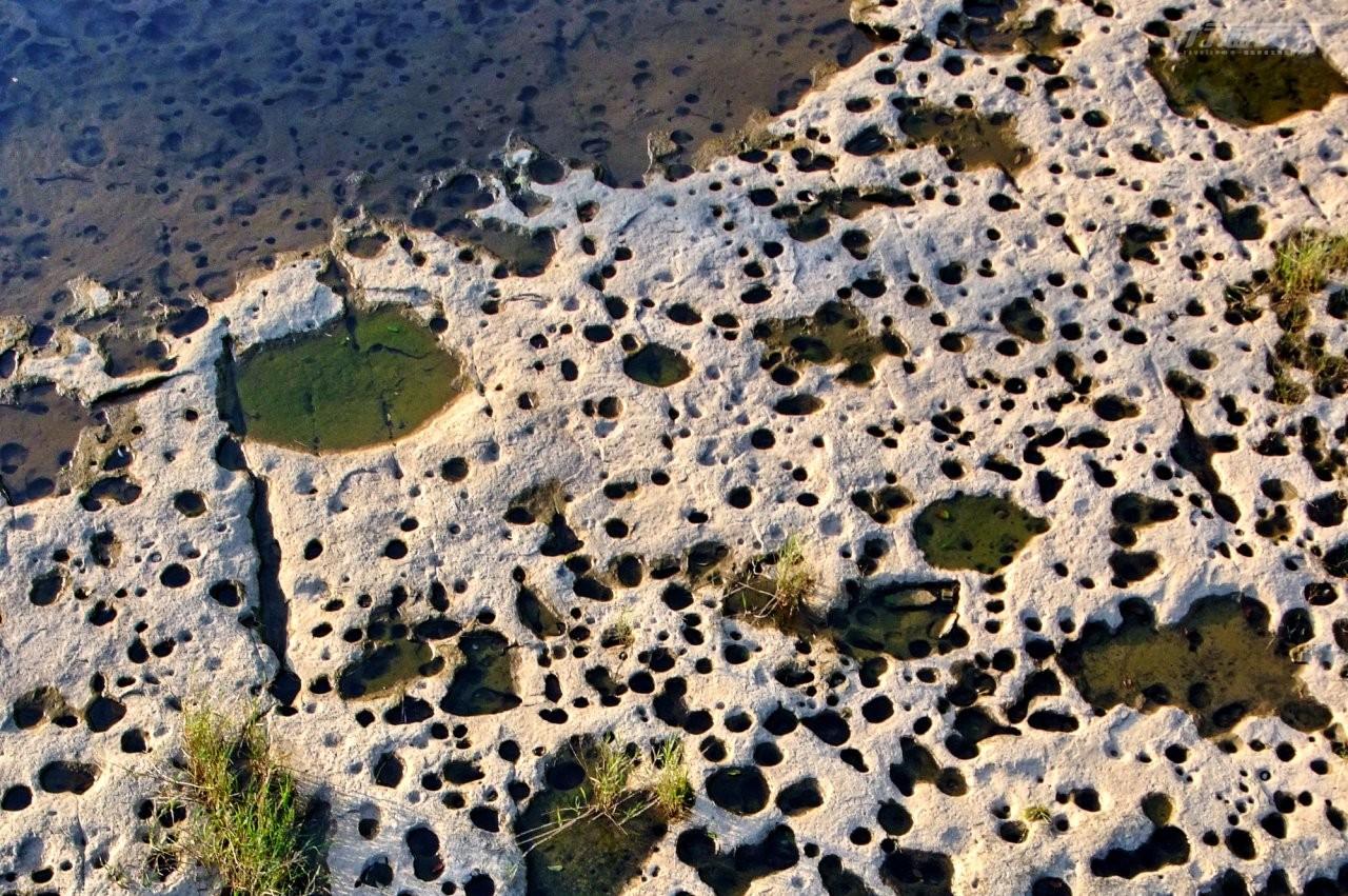 ▲密密麻麻的壺穴,是月桃寮溪常見的特色地形。