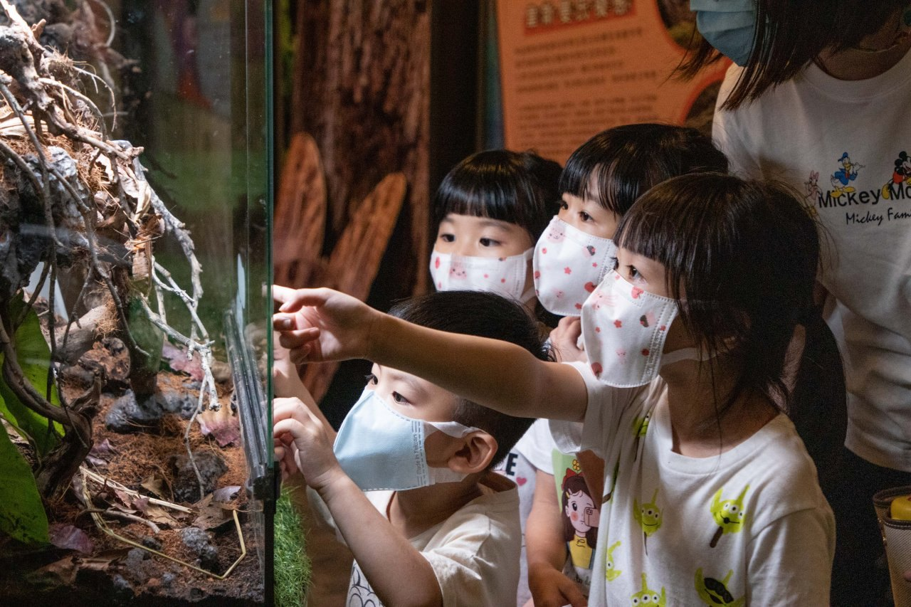 親子旅遊,親子飯店,親子活動,親子共學,親子共玩,生態課程,變裝體驗