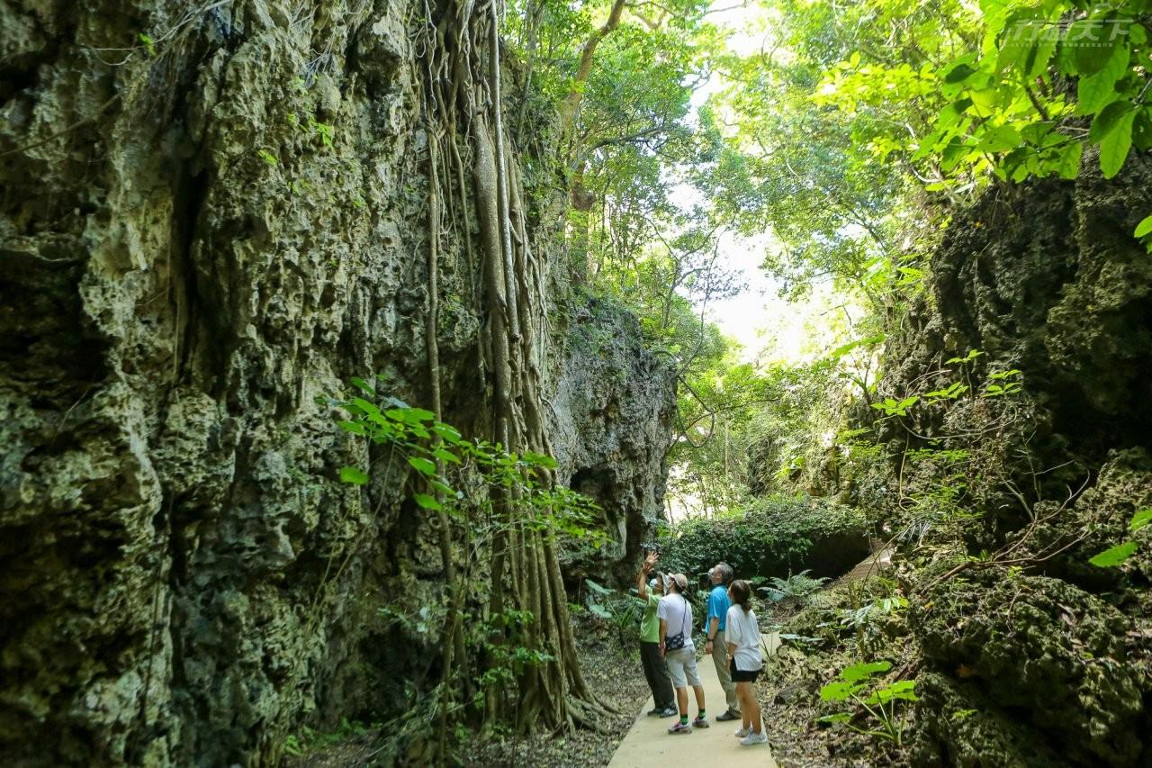 屏東景點|有全台最長的石灰岩洞 墾丁森林遊樂區還有宛若魔戒樹人居住的古榕道