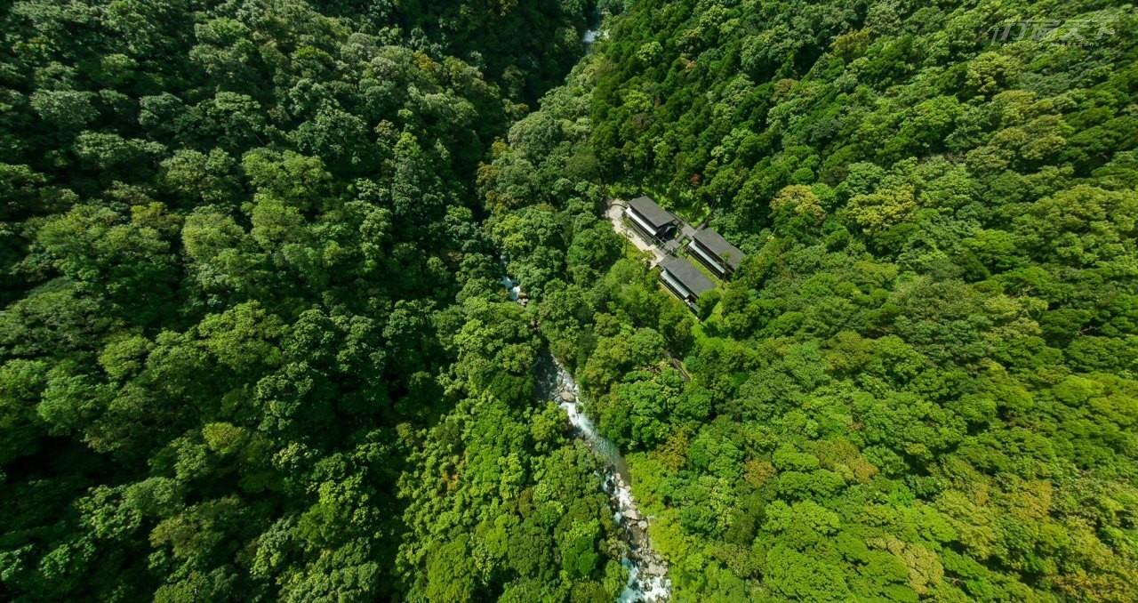 新北景點|新手、輪椅族都能輕鬆遊園 台灣最美低海拔楓紅12月滿月圓綻放