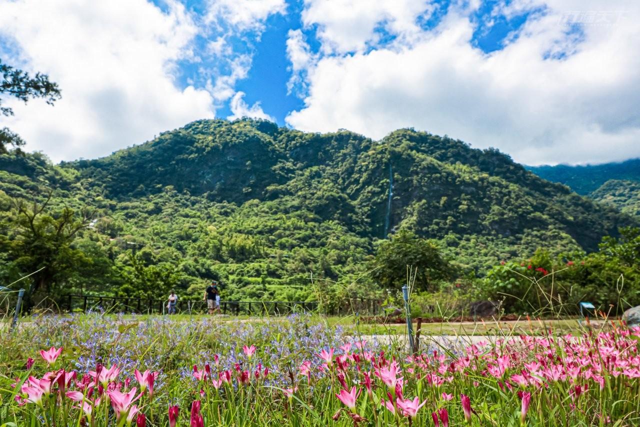 台東景點|80%未開發老少咸宜的森林遊樂區 來知本泡湯外也要來走一走享受山裡清新空氣