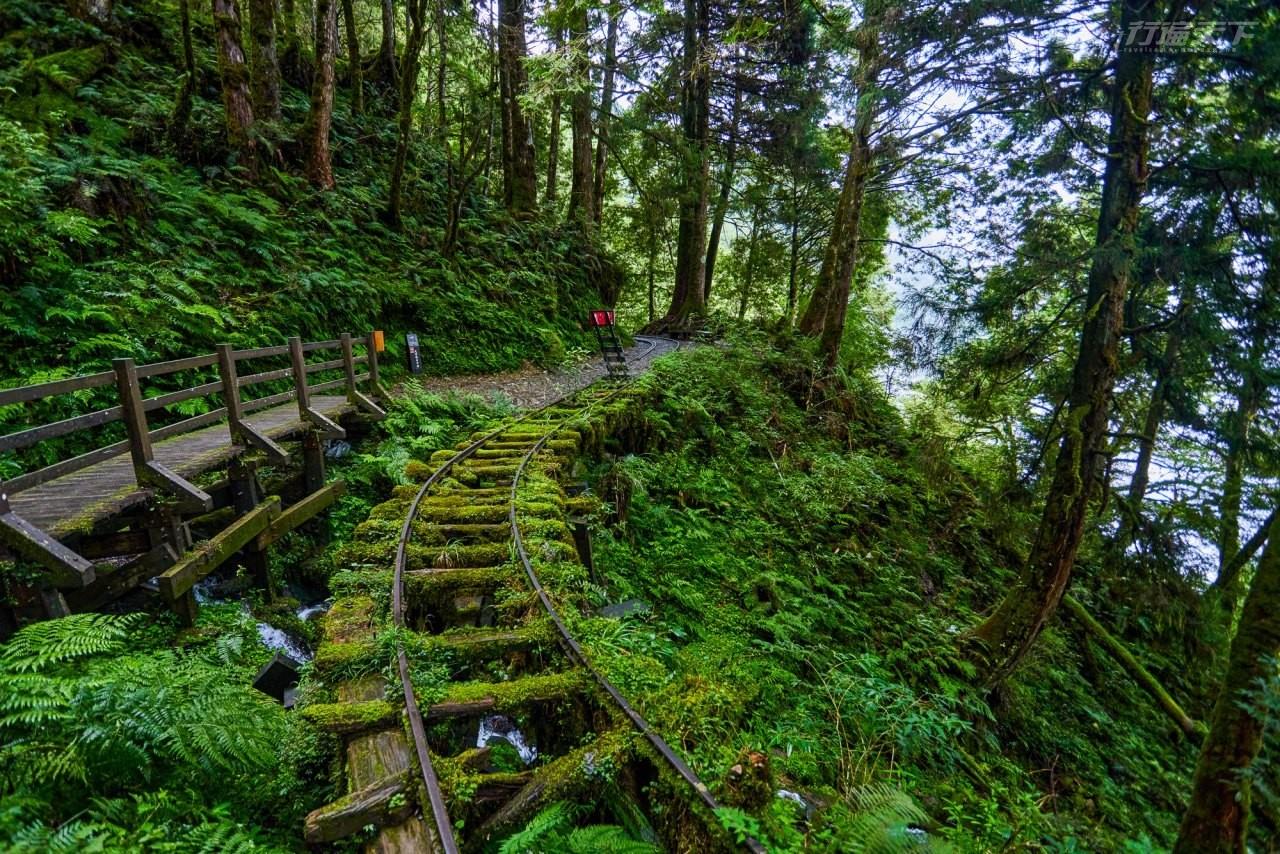 ▲步道長900公尺,森林優美,沿途保留鐵道、台車輪軸等歷史遺跡,時而放晴,時而陷入茫茫的霧氣之中,見晴懷古步道彷若仙境。