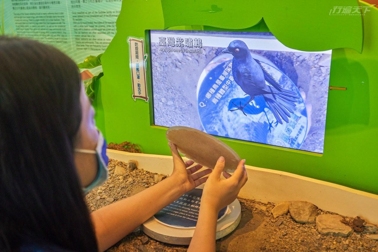 ▲透過遊客中心的AR互動裝置,能更加認識園區裡的動物生態。