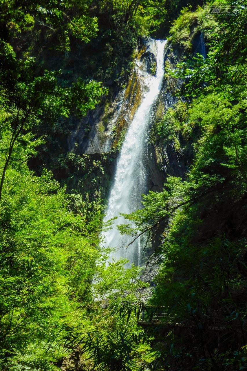 ▲奧萬大因地質構造產生飛瀑、雙瀑與連瀑等不同型態瀑布,全年有水,其中還有負離子含量為全台第二的飛瀑瀑布,氣勢相當磅礴。(圖/奧萬大國家森林遊樂區提供)