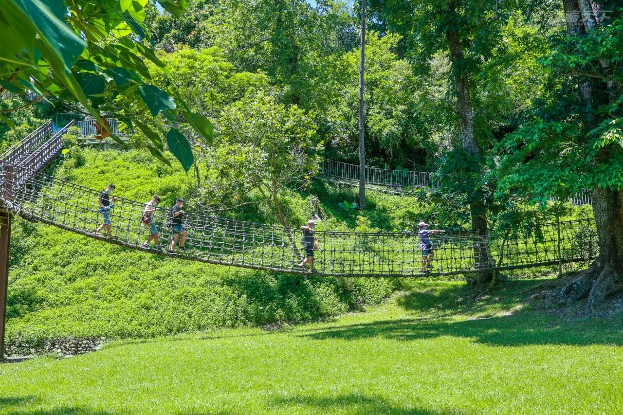 ▲園區最受小朋友喜愛的區域是嬉遊林間區,設有樹冠層葉脈棧道、鞦韆、三索橋等設施,可以讓大小朋友就近觀察樹冠層動、植物生態。
