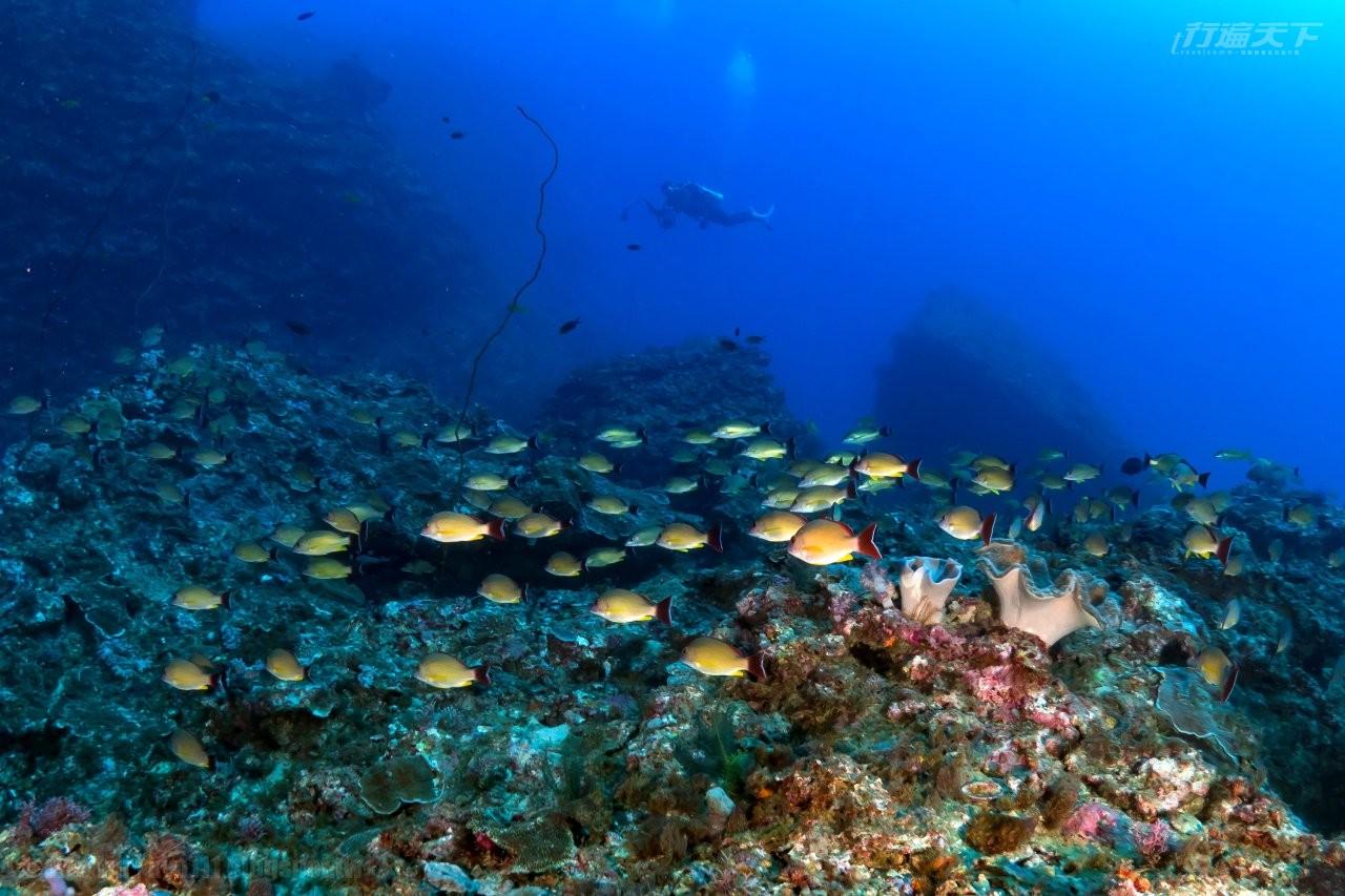 屏東墾丁|入住奢華旅店攬山海景 潛入海中一探最美珊瑚礁
