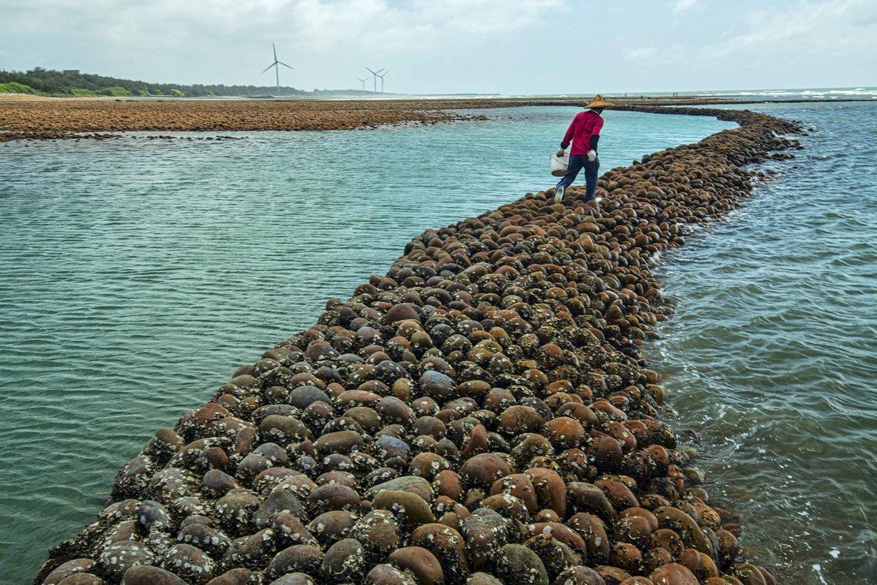桃園,三生一體,海洋環境監測科技中心,生活,生產,生態